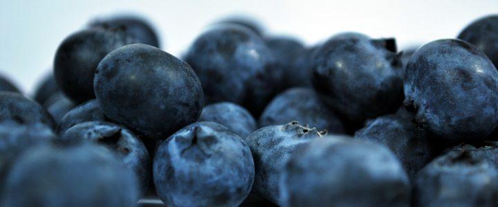 Good Food – Blauwe bessen