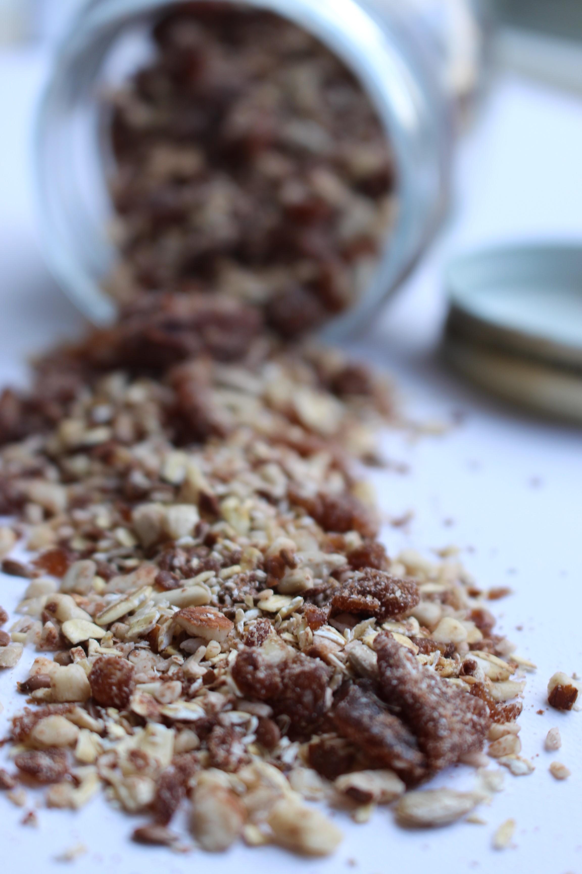 zelf gemaakte rauwe granola