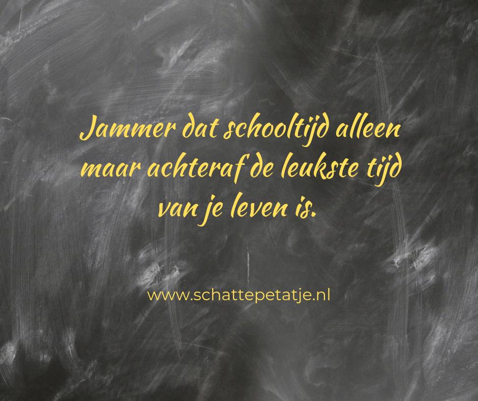 Quote Jammer dat schooltijd alleen maar achteraf de leukste tijd van je leven is.