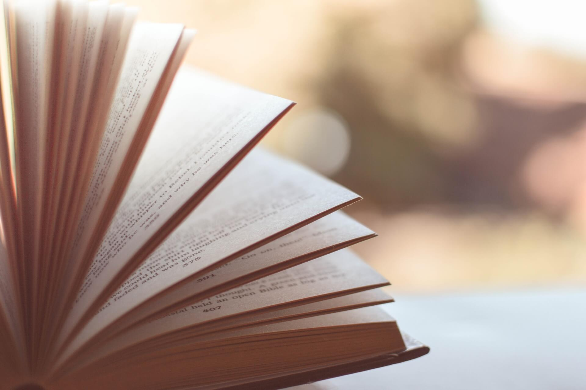 Mijn gelezen boeken in 2019