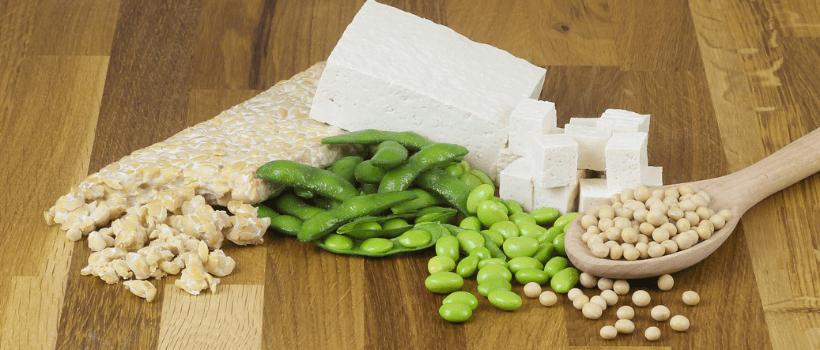 Wat is het verschil tussen tofu en tempeh?